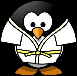 judo-161543_960_7201